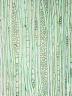 ELAEOCARPACEAE Elaeocarpus speciosus