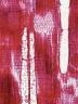 ELAEOCARPACEAE Elaeocarpus varunua