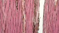 HUMIRIACEAE Vantanea parviflora