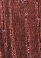 LEGUMINOSAE DETARIOIDEAE Hymenaea courbaril