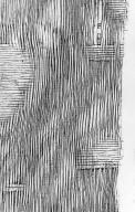 LEGUMINOSAE CAESALPINIOIDEAE Hymenaea courbaril